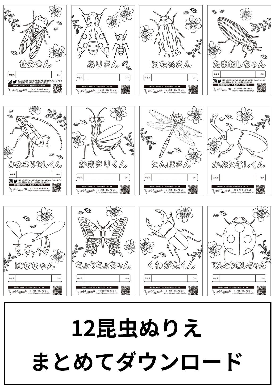 昆虫12種 無料ぬりえ